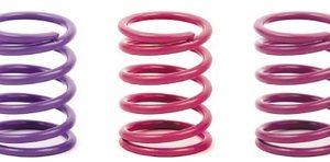 Spring Set D=1.7 (28lb) Violet C= 4.0 - Medium - Rear (2)
