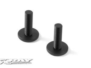 Composite Rear Body Holder Screw (2)